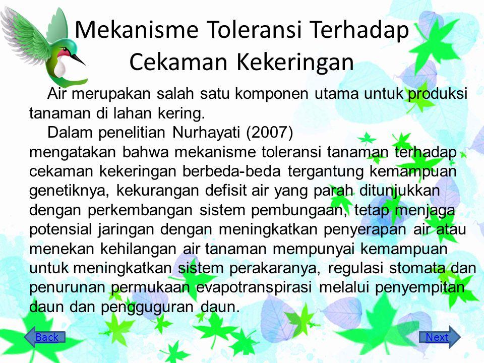 Mekanisme Toleransi Terhadap Cekaman Kekeringan