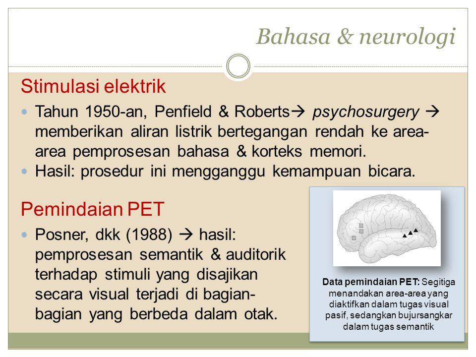 Bahasa & neurologi Stimulasi elektrik Pemindaian PET