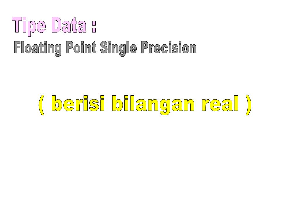 Floating Point Single Precision ( berisi bilangan real )