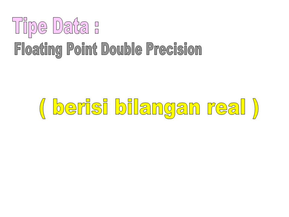 Floating Point Double Precision ( berisi bilangan real )