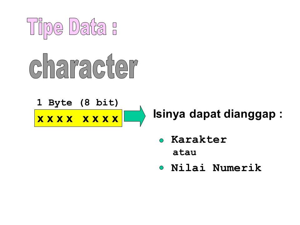 Tipe Data : character Isinya dapat dianggap : x x x x x x x x Karakter