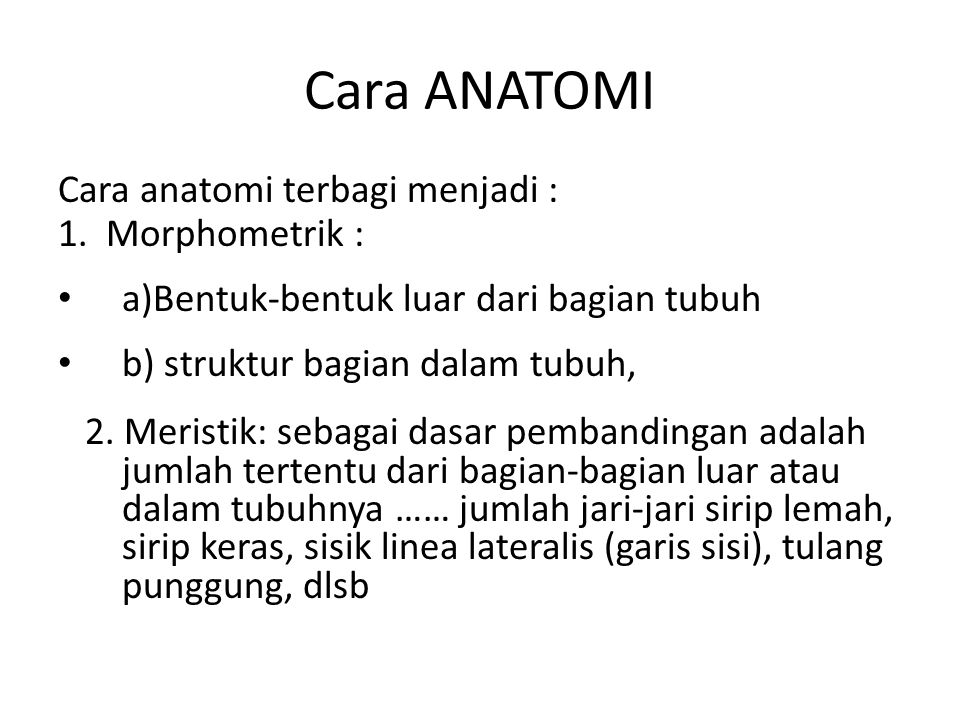 Cara ANATOMI Cara anatomi terbagi menjadi : 1. Morphometrik :