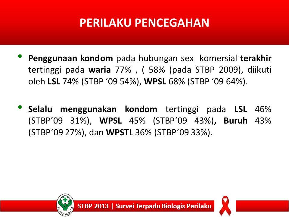 STBP 2013 | Survei Terpadu Biologis Perilaku