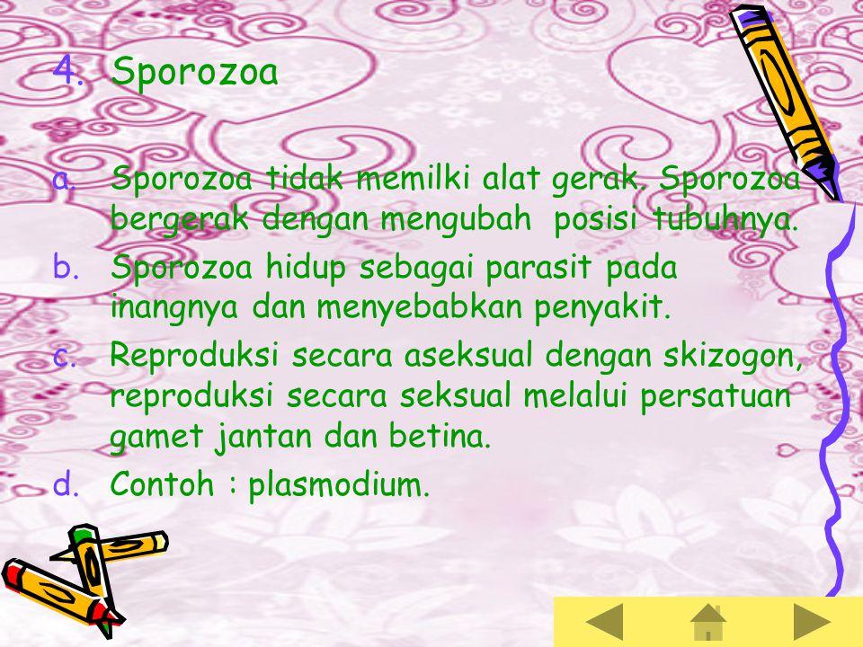 Sporozoa Sporozoa tidak memilki alat gerak. Sporozoa bergerak dengan mengubah posisi tubuhnya.