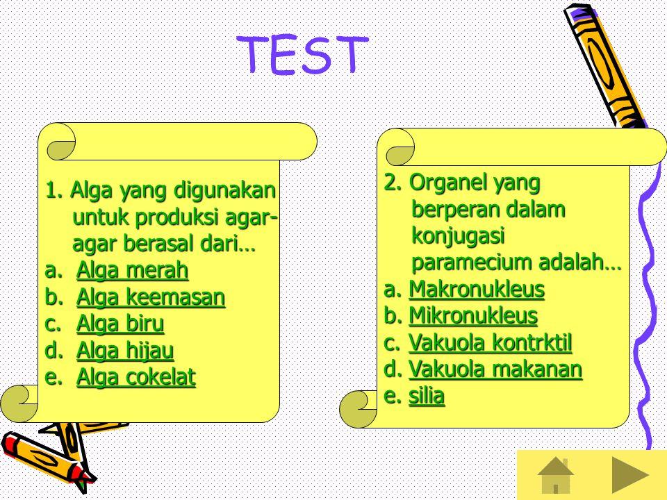 TEST 1. Alga yang digunakan 2. Organel yang untuk produksi agar-