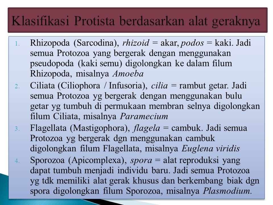 Klasifikasi Protista berdasarkan alat geraknya