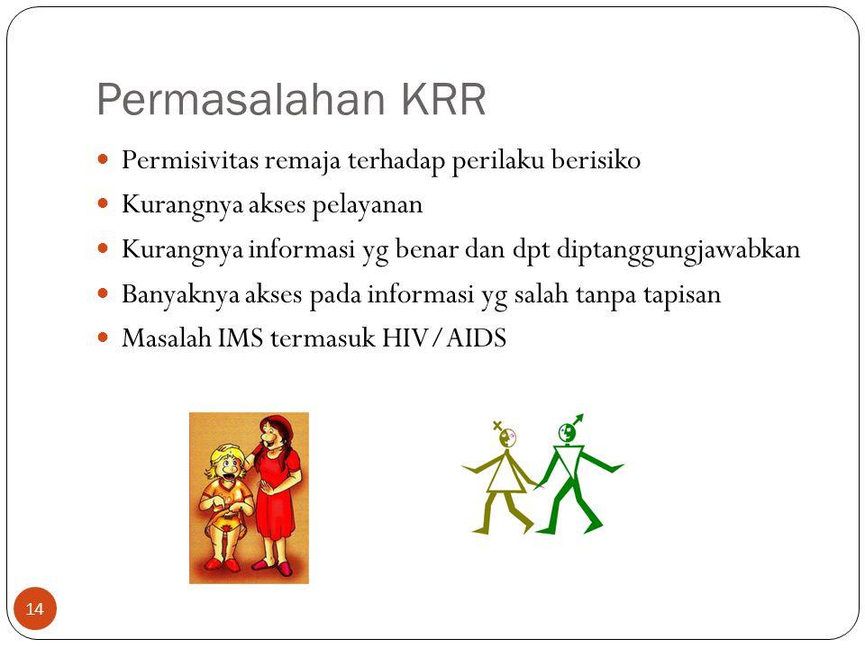 Permasalahan KRR Permisivitas remaja terhadap perilaku berisiko