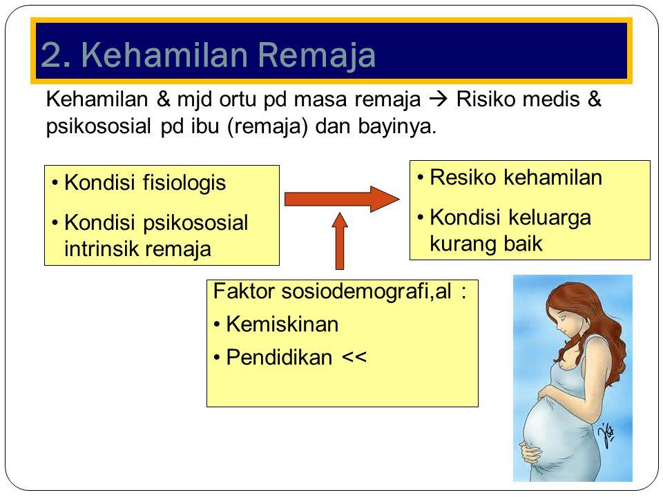 2. Kehamilan Remaja Kehamilan & mjd ortu pd masa remaja  Risiko medis & psikososial pd ibu (remaja) dan bayinya.