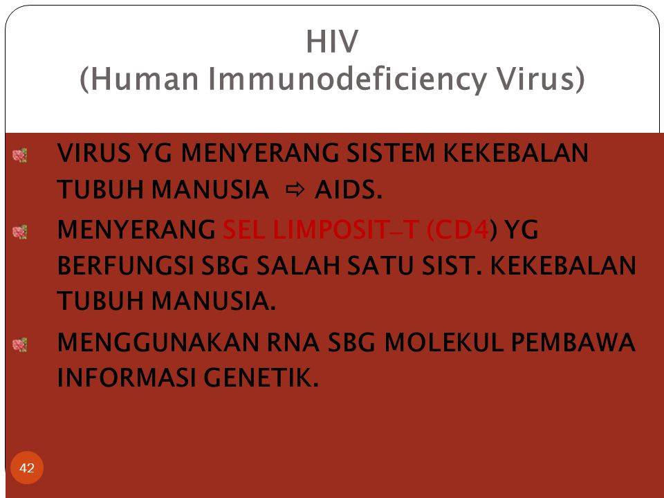 HIV (Human Immunodeficiency Virus)