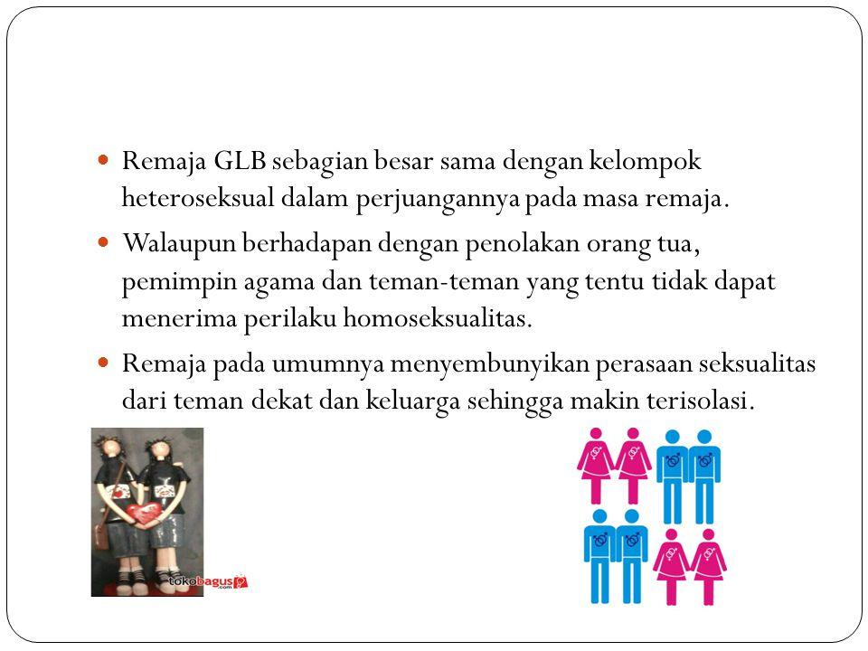 Remaja GLB sebagian besar sama dengan kelompok heteroseksual dalam perjuangannya pada masa remaja.