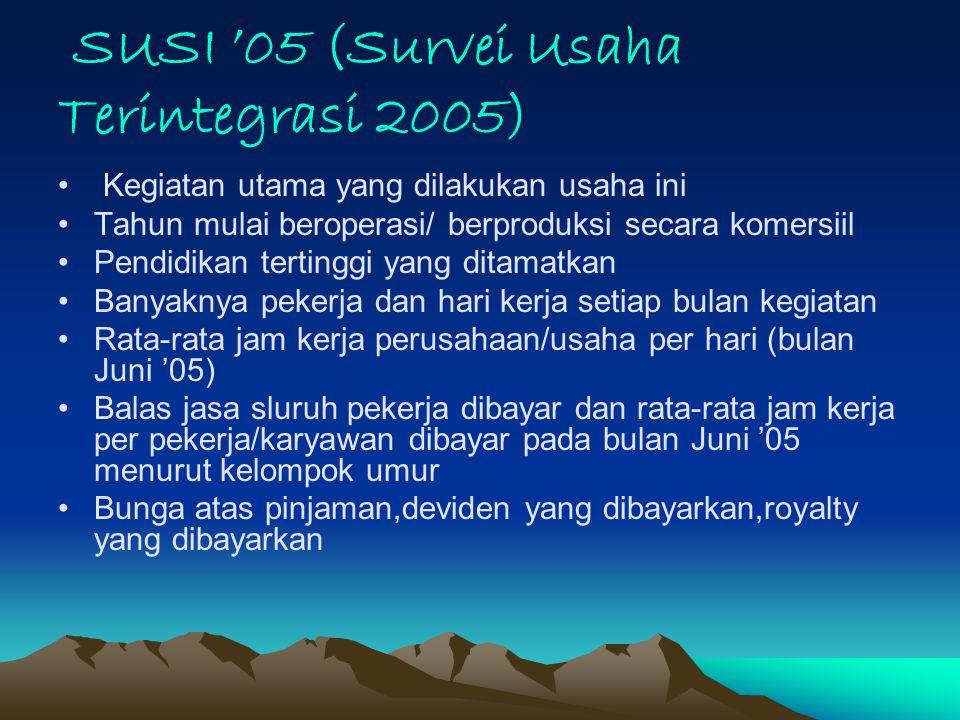 SUSI '05 (Survei Usaha Terintegrasi 2005)