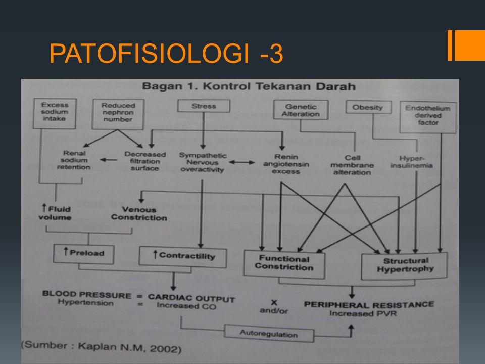 PATOFISIOLOGI -3