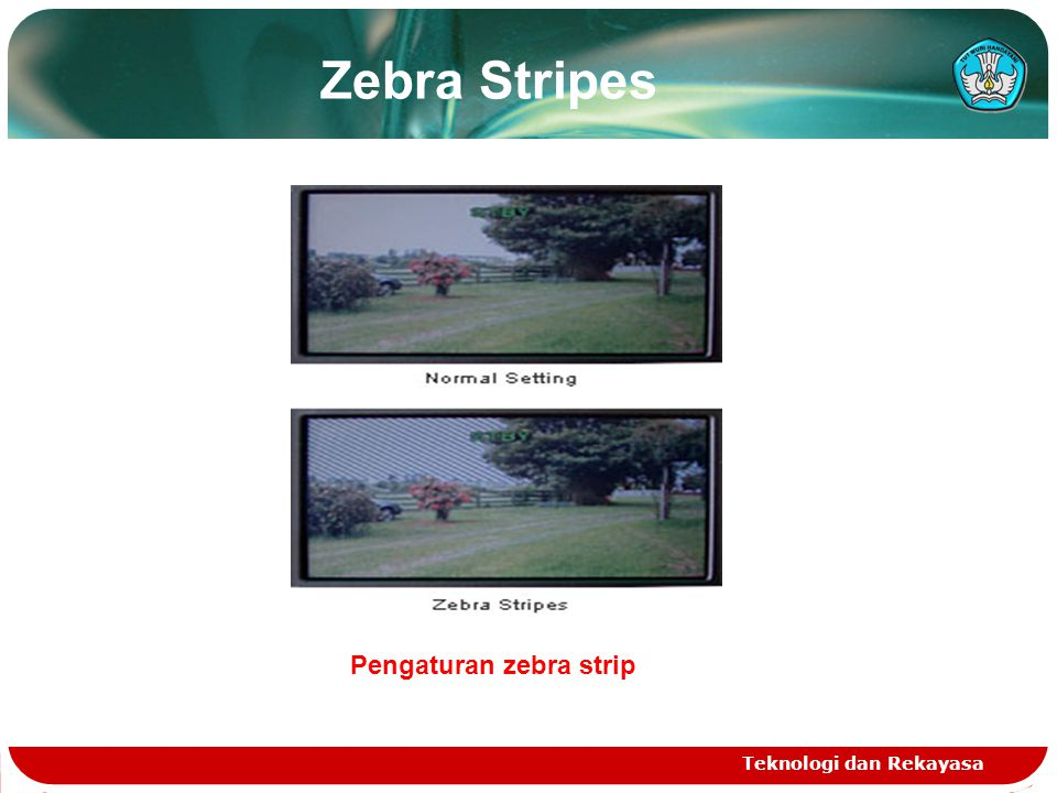Pengaturan zebra strip