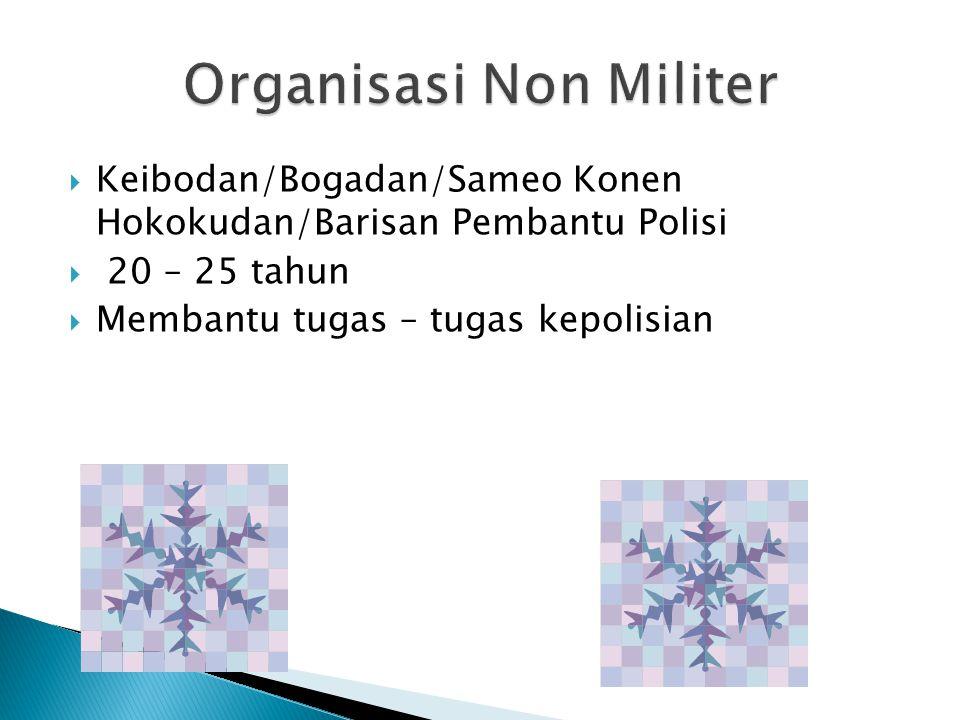 Organisasi Non Militer
