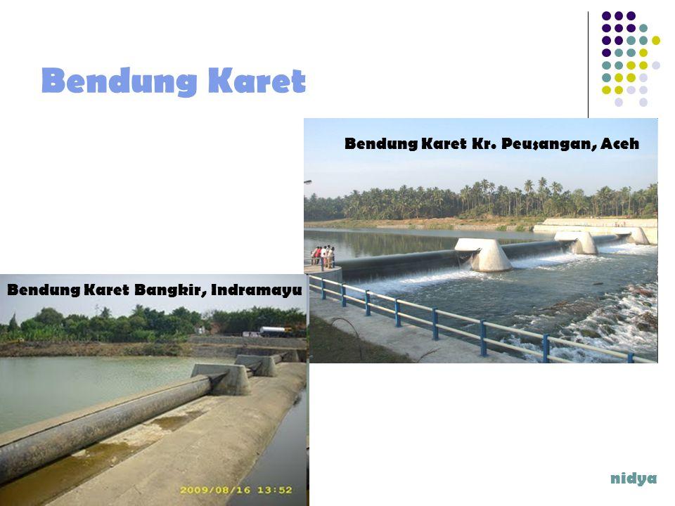 Bendung Karet Bendung Karet Kr. Peusangan, Aceh