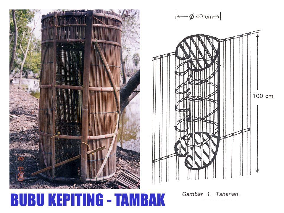BUBU KEPITING - TAMBAK