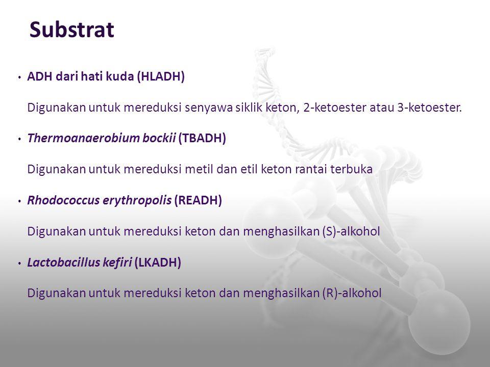 Substrat ADH dari hati kuda (HLADH)