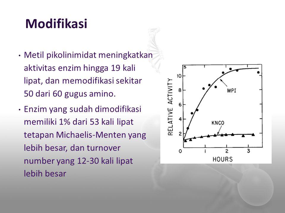 Modifikasi Metil pikolinimidat meningkatkan aktivitas enzim hingga 19 kali lipat, dan memodifikasi sekitar 50 dari 60 gugus amino.