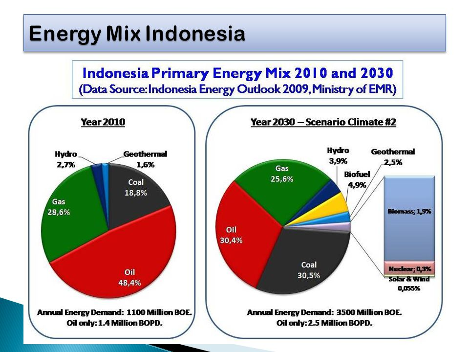 Energy Mix Indonesia