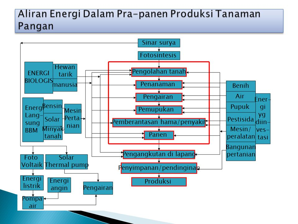 Aliran Energi Dalam Pra-panen Produksi Tanaman Pangan