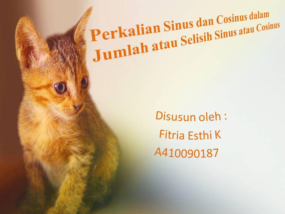 Disusun oleh : Fitria Esthi K A410090187