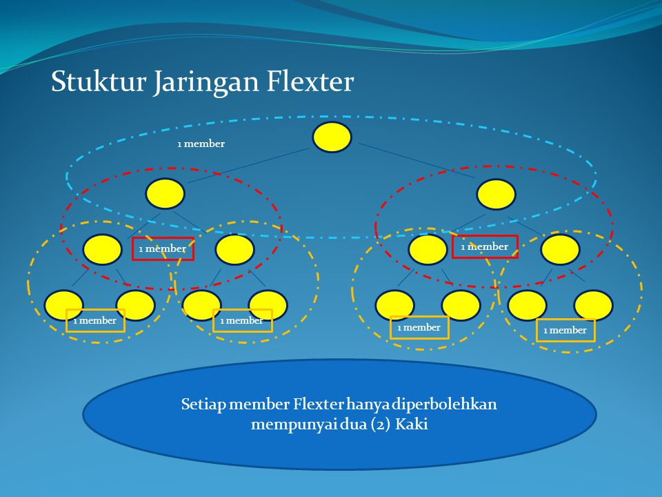 Setiap member Flexter hanya diperbolehkan mempunyai dua (2) Kaki