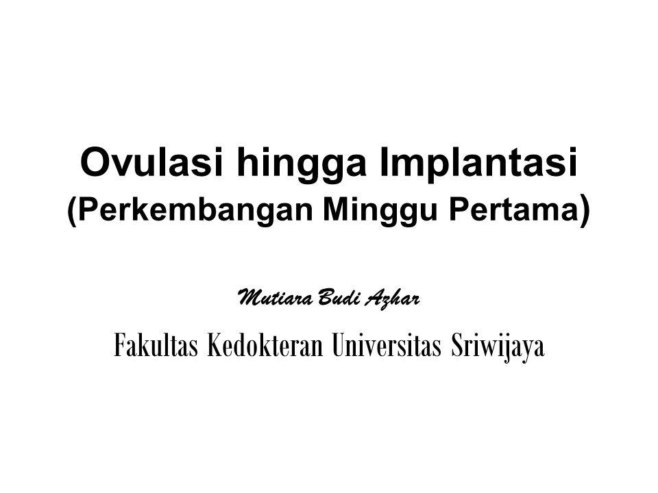 Ovulasi hingga Implantasi (Perkembangan Minggu Pertama)
