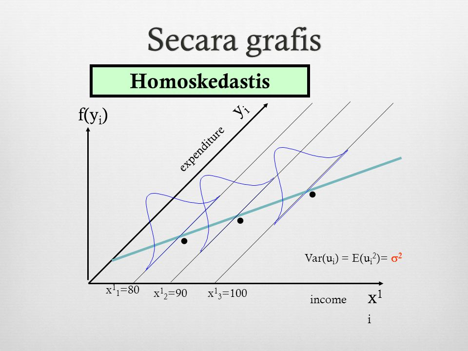 . Secara grafis Homoskedastis yi f(yi) x1i x11=80 x13=100 expenditure