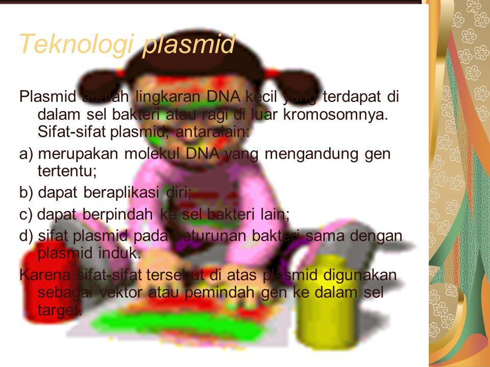 Teknologi plasmid