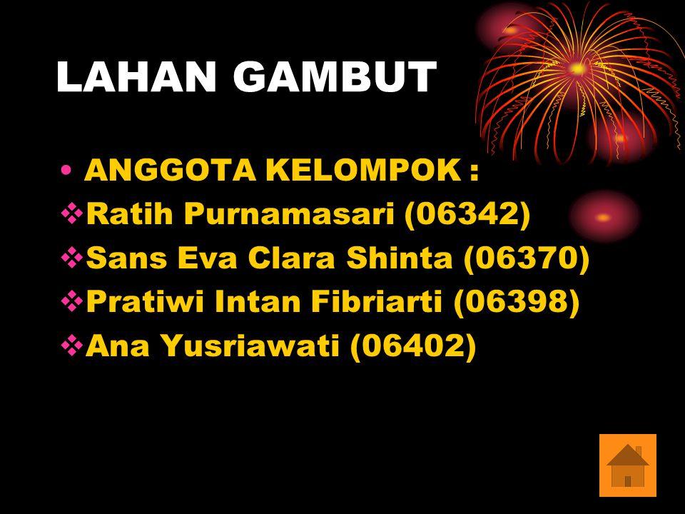 LAHAN GAMBUT ANGGOTA KELOMPOK : Ratih Purnamasari (06342)