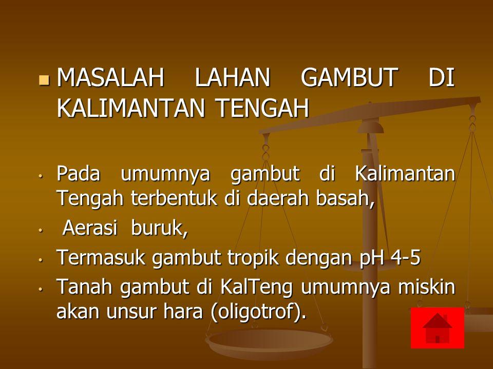 MASALAH LAHAN GAMBUT DI KALIMANTAN TENGAH