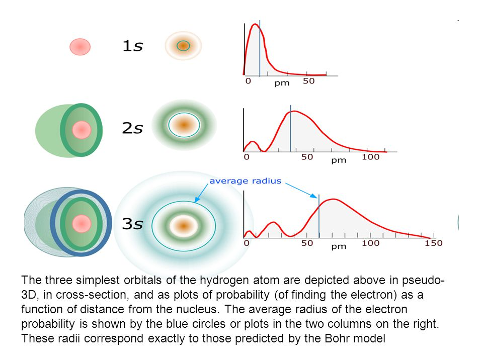 The three simplest orbitals of the hydrogen atom are depicted above in pseudo-3D, in cross-section, and as plots of probability (of finding the electron) as a function of distance from the nucleus.