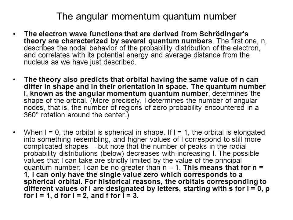 The angular momentum quantum number