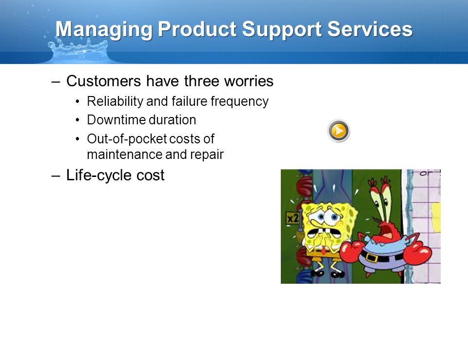 Managing Product Support Services