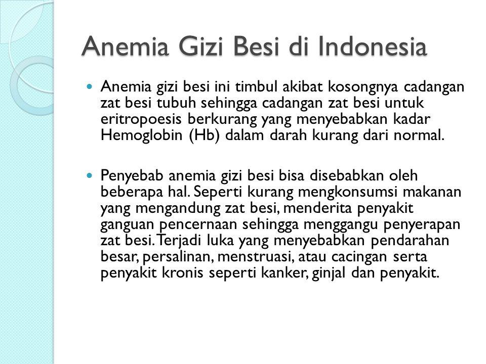 Anemia Gizi Besi di Indonesia