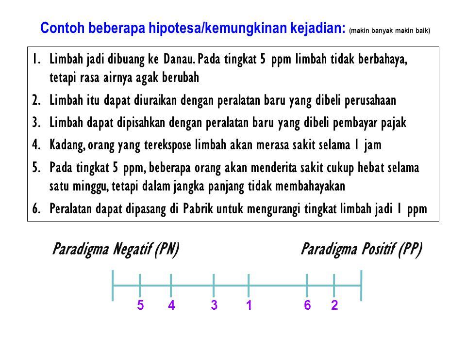 Paradigma Negatif (PN) Paradigma Positif (PP)