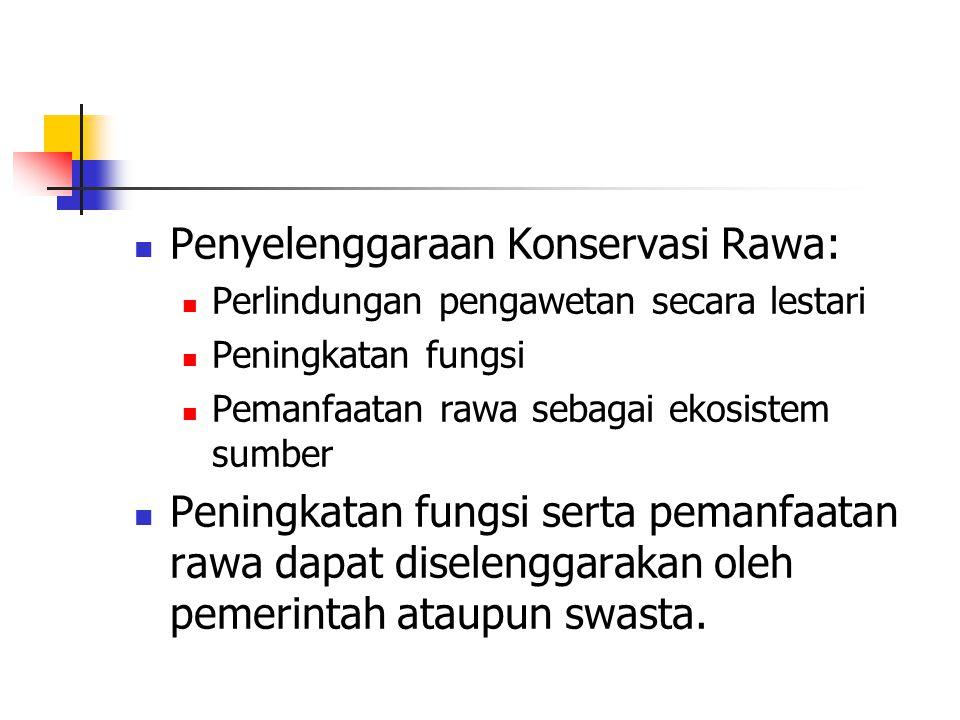Penyelenggaraan Konservasi Rawa: