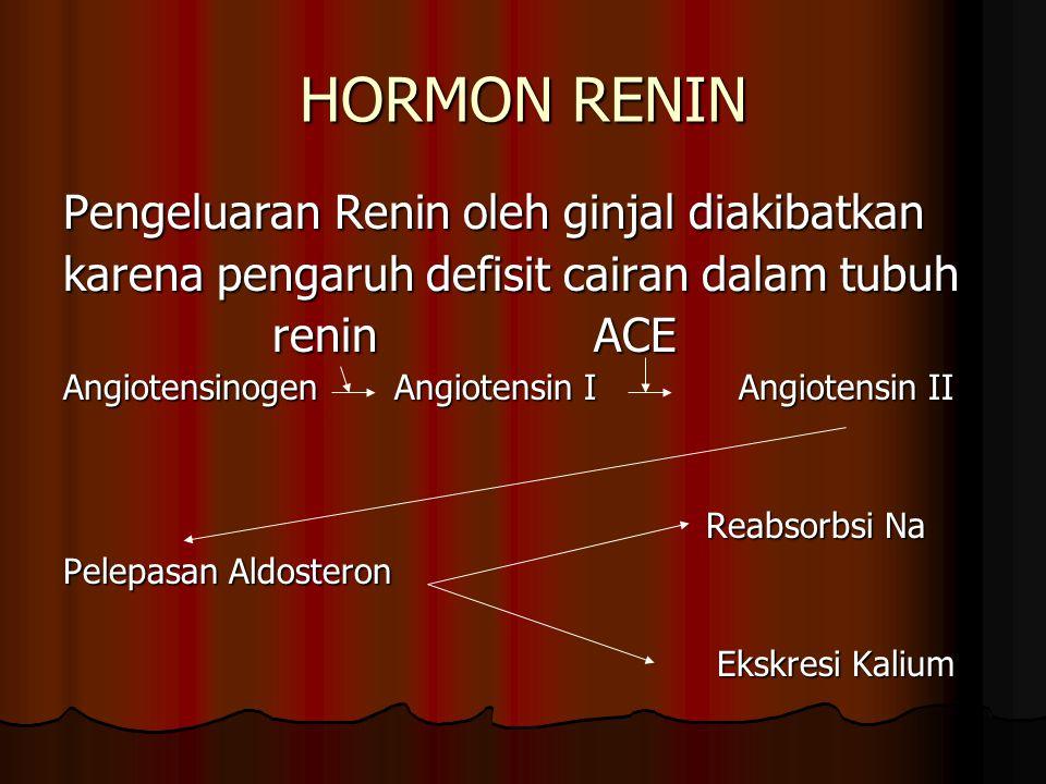 HORMON RENIN Pengeluaran Renin oleh ginjal diakibatkan
