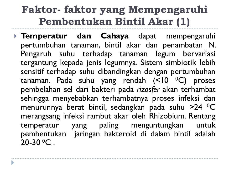 Faktor- faktor yang Mempengaruhi Pembentukan Bintil Akar (1)