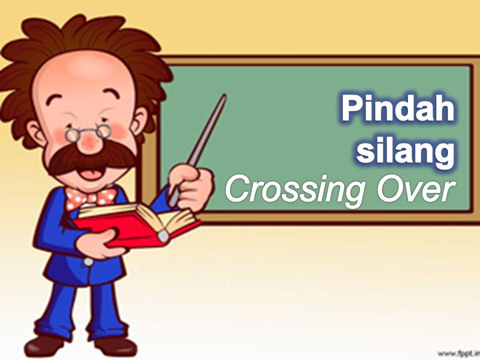 Pindah silang Crossing Over