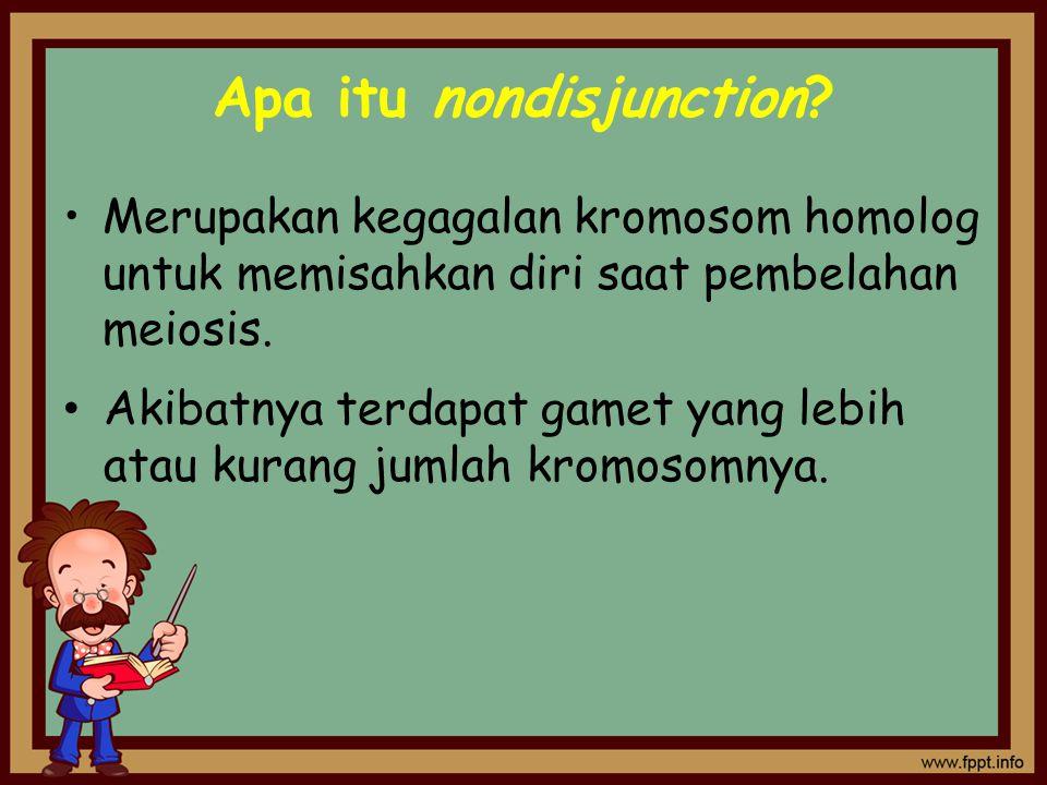 Apa itu nondisjunction