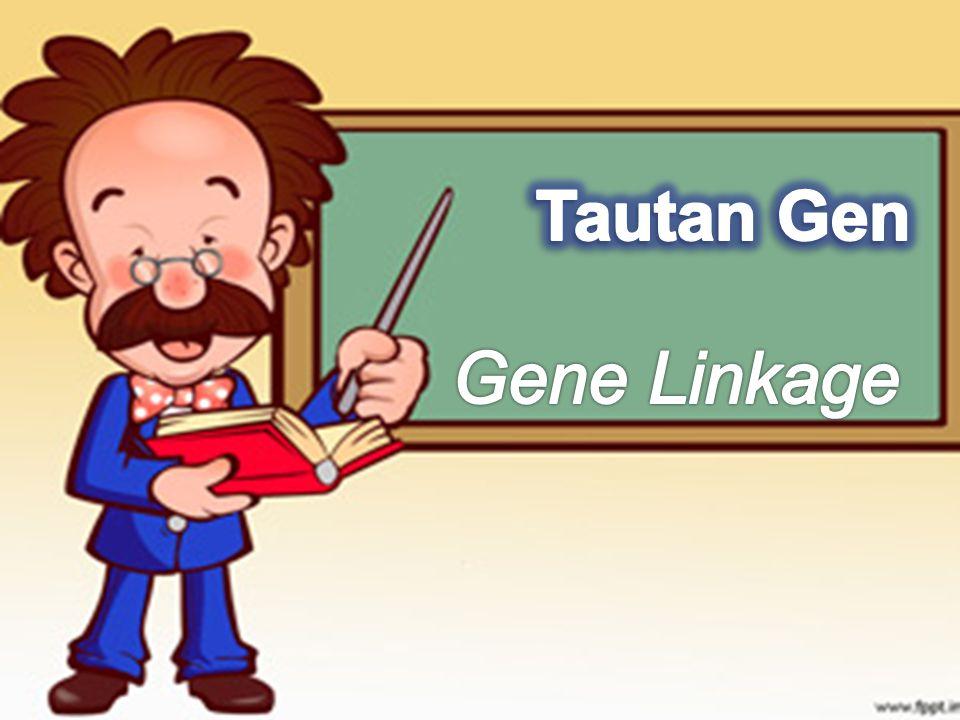 Tautan Gen Gene Linkage