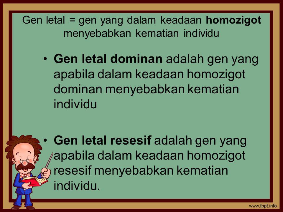 Gen letal = gen yang dalam keadaan homozigot menyebabkan kematian individu
