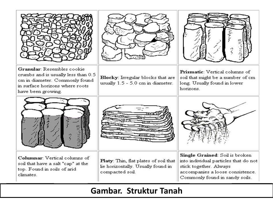 Gambar. Struktur Tanah