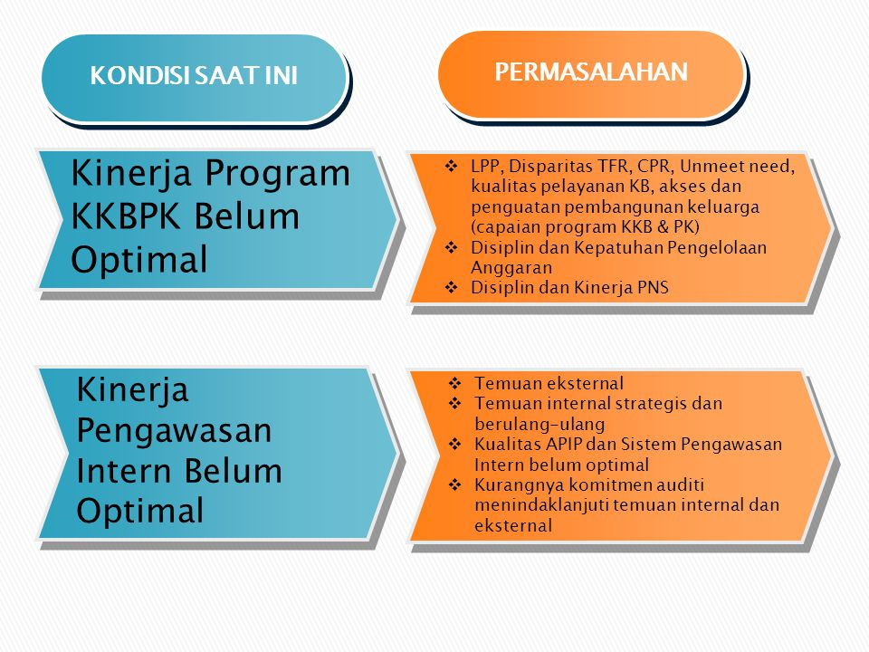 Kinerja Program KKBPK Belum Optimal