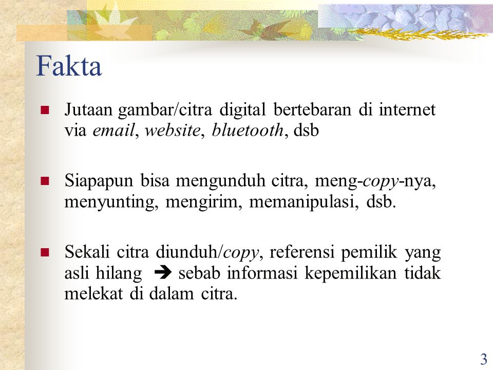 Fakta Jutaan gambar/citra digital bertebaran di internet via email, website, bluetooth, dsb.