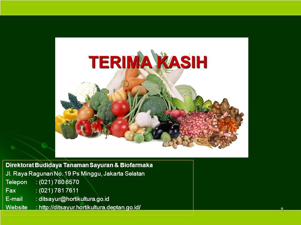 TERIMA KASIH Direktorat Budidaya Tanaman Sayuran & Biofarmaka