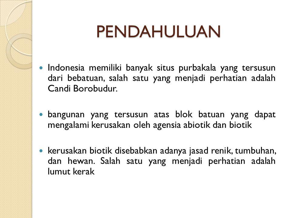 PENDAHULUAN Indonesia memiliki banyak situs purbakala yang tersusun dari bebatuan, salah satu yang menjadi perhatian adalah Candi Borobudur.