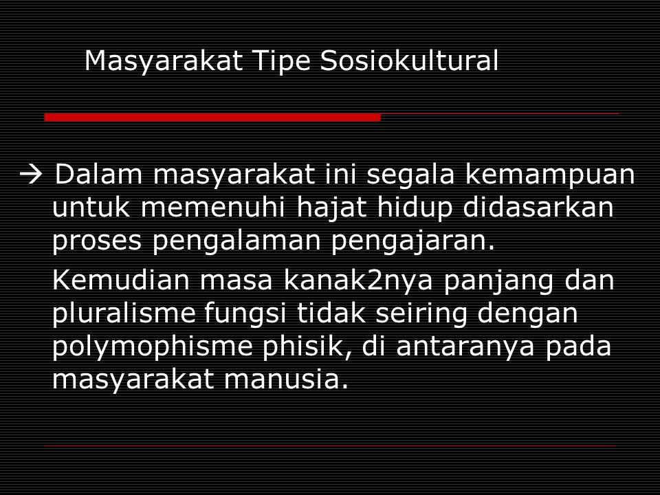 Masyarakat Tipe Sosiokultural