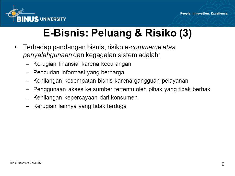 E-Bisnis: Peluang & Risiko (3)